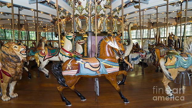 Wingsdomain Art and Photography - Merry Go Around DSC2963