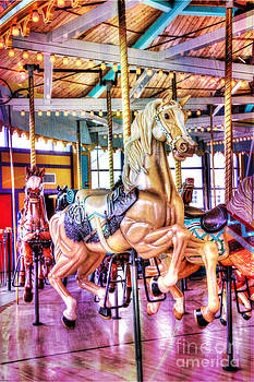 Merry-Go-Round Princess by Lori Frostad