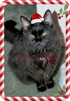 Merry Rocket Christmas by Sheila Noren