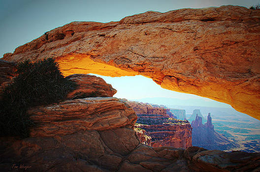 Mesa Arch by Tom Wenger