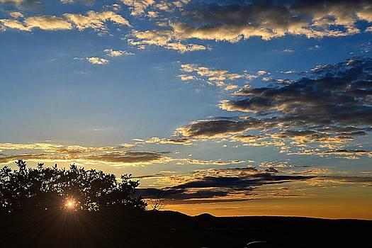 Mesa Verde by Gerald Greenwood