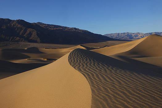 Susan Rovira - Mesquite Dunes Death Valley 1