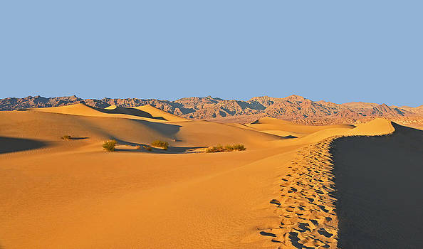 Dana Sohr - Mesquite Flat Sand Dunes - Death Valley
