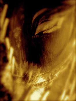 Metamorphosis of the Blue Heron Woman by Jeannine Sandoval