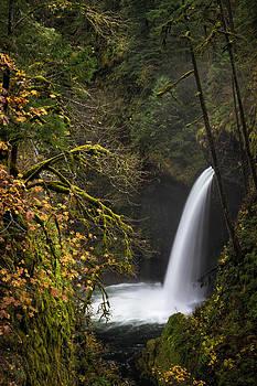 Metlako Falls by Brian Bonham