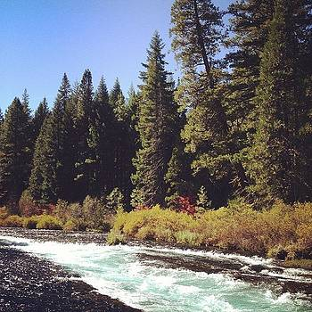 Metolius River by Megan Lacy