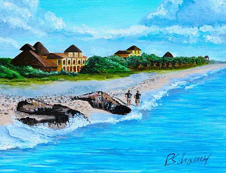 Mexican Beach by Paul Schoenig