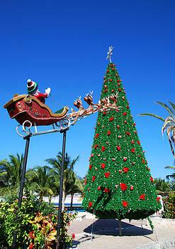 Ramunas Bruzas - Mexican Christmas