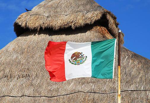 Ramunas Bruzas - Mexican Flag