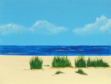 Mexico Beach II by Nancy Nuce