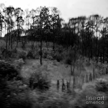 Mexico-fineart-25 by Javier Ferrando