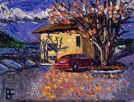 Allen Forrest - Meydenbauer Bay Condo and Car