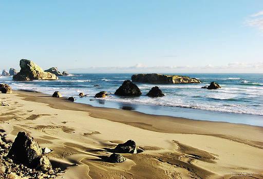 Meyers Creek Beach Oregon by Rafael Escalios