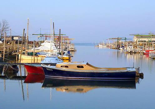 Meyran Oyster Port by Bishopston Fine Art