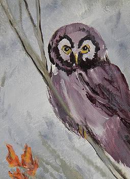 Mi Owl by Shirley Watts