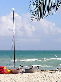 Miami Beach 1 by Sandy Scharmer