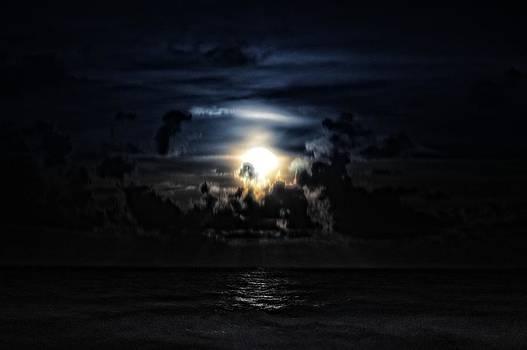 Miami Beach Moon by J Anthony