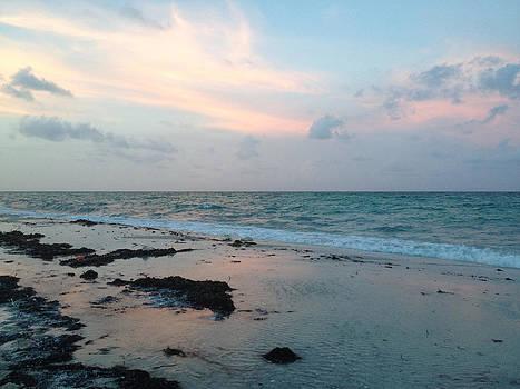 Miami Beach Sunset by Rosie Brown