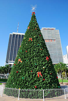 Ramunas Bruzas - Miami Christmas Tree