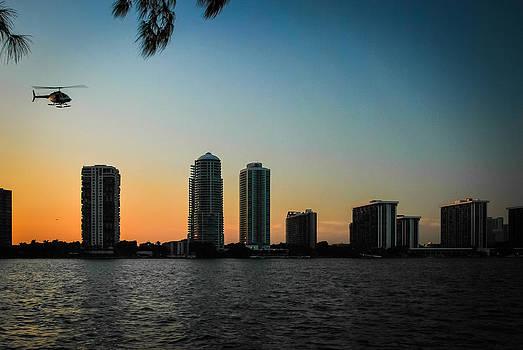 Miami by Jose Mena