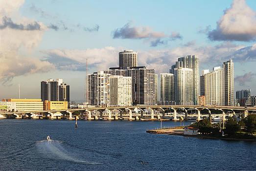 Ramunas Bruzas - Miami Skyline