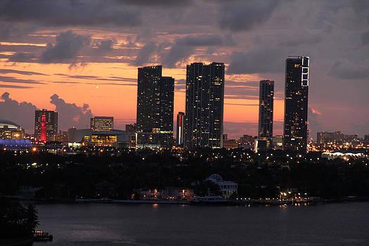 Miami Skyline by S C