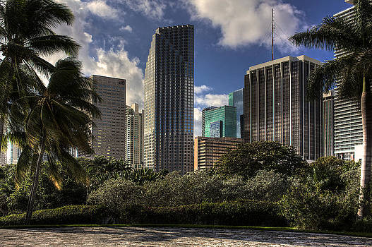 Miami Skyscrapers by William Wetmore