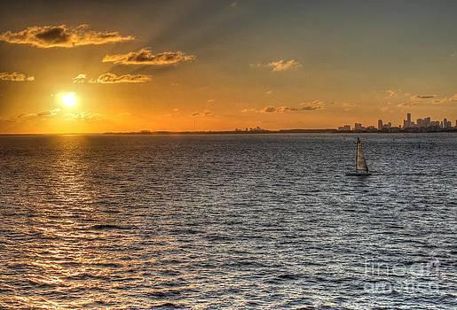 Ines Bolasini - Miami Sunset