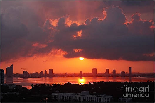 Miami Sunset by Shanna Vincent
