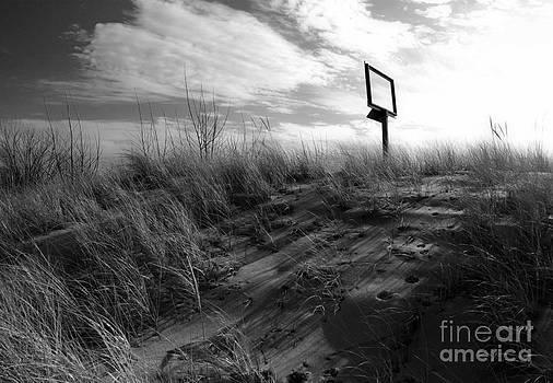 Gregory Dyer - Michigan Beach
