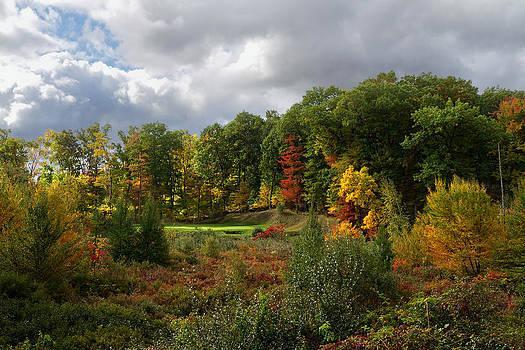 Michigan golf 3 by Gary  Drinkhorn