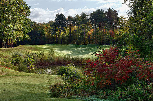 Michigan golf by Gary  Drinkhorn