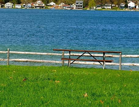 Michigan park by Shaivi Divatia