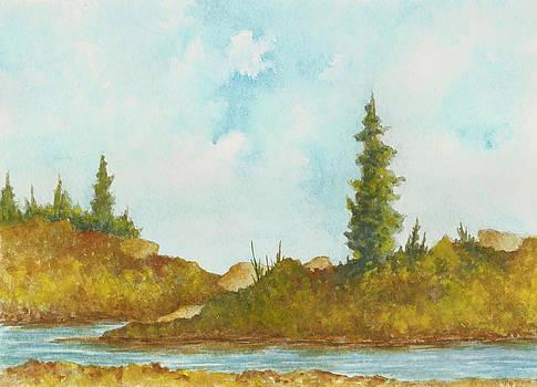 Michigan Wilderness by Michael Vigliotti