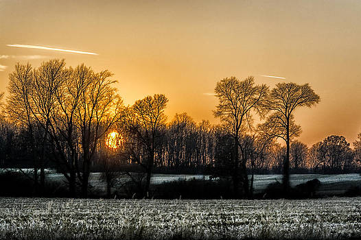Michigan Winter Sunset by Gej Jones