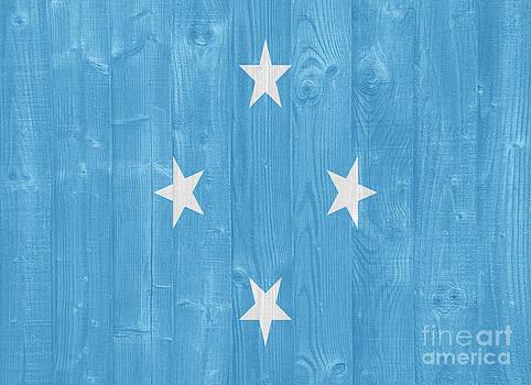 Micronesia flag by Luis Alvarenga
