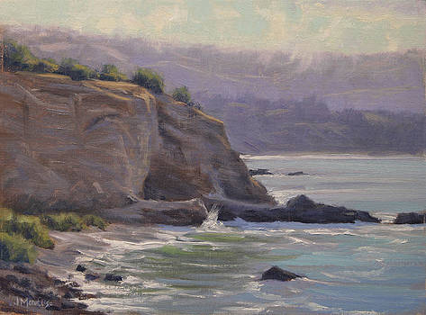 Mid Morning Palos Verdes Coast by Joe Mancuso