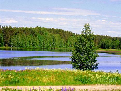 Mid-summer day by Pauli Hyvonen