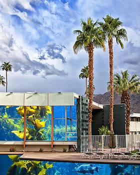 William Dey - MIDCENTURY AQUARIUM Palm Springs