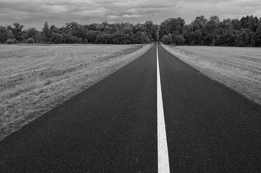 Middle of the road by Konstantin Gushcha