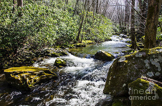 Paul Mashburn - Middle Prong Little River