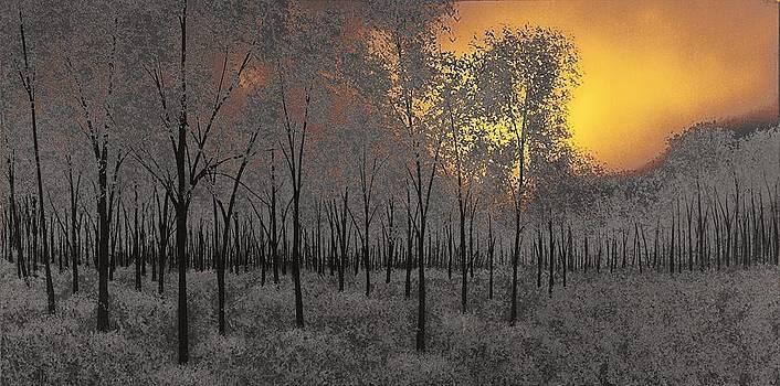 Midnight by Justin  Strom