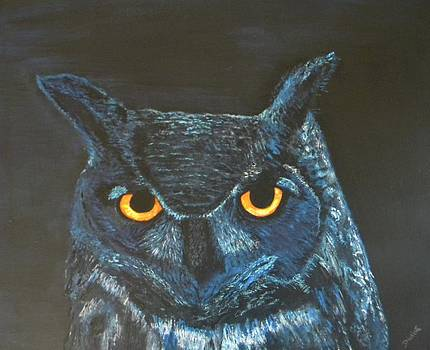 Midnight Owl by Denise Hills