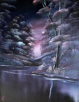 Midnight Reflections by Cynthia Adams