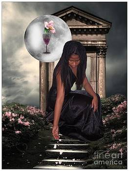 Midnight Rose by Brenda Rich