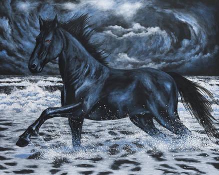 Midnight Run by Joe Mckinney
