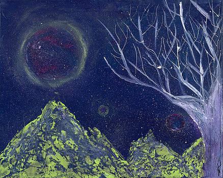 Midnight by Tamika Lamb