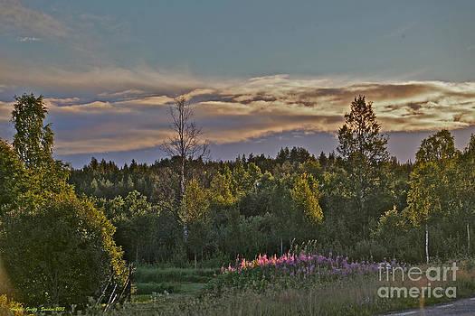 Midsummer Lights Dream  I do love you Scandinavia. 2013. by  Andrzej Goszcz