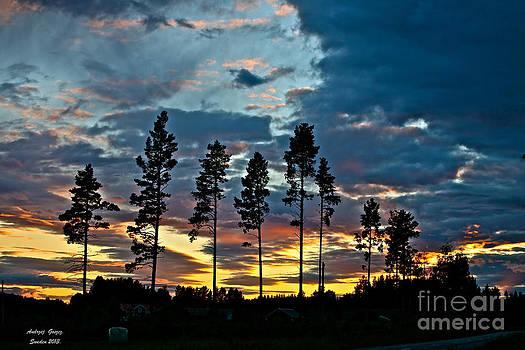 Midsummer Night's Prayer. Sweden 2013. Featured 3 Times by  Andrzej Goszcz