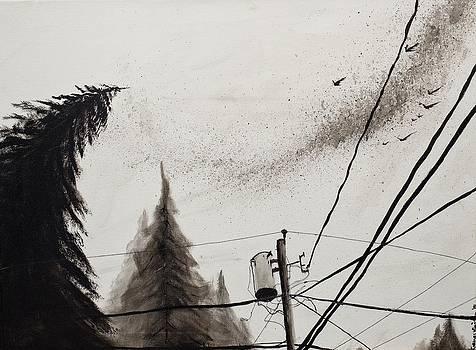 Migration  by Rachel Brisbois